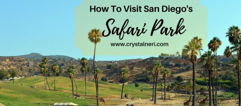 sandiego-safari-park-blog-header