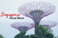singapore crystal neri