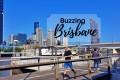 Buzzing Brisbane
